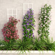 wall flowers 3d asset wall flowers cgtrader