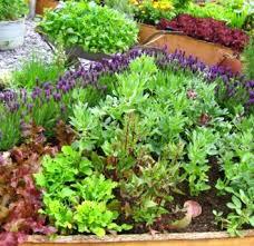 Patio Vegetable Garden Ideas Backyard Vegetable Garden Ideas 18 Appealing Vegetable Garden
