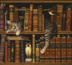 cat and books el grande pics