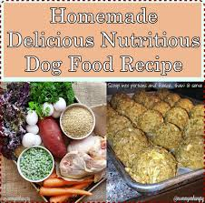 homemade delicious nutritious dog food recipe the homestead survival