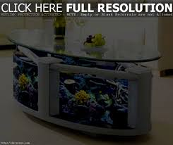 interior pleasing enchanting modern fish tanks pics decoration