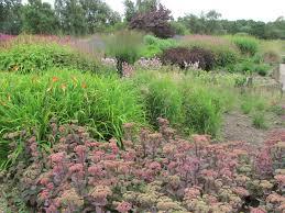 the gardens of piet oudolf greenbenchramblings