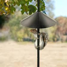 amazon com woodlink nabaf18 audubon wrap around squirrel baffle