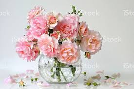 Vase With Roses Bouquet Of Pastel Pink Roses In A Vase Roses Decoration Stock