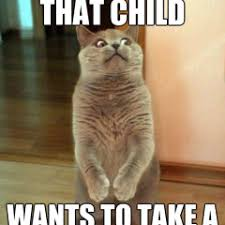 Child Of God Meme - funny meme archives page 699 of 982 cat planet cat planet