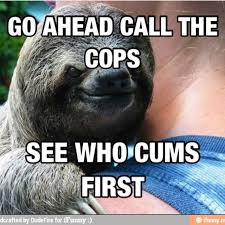 Funny Sloth Memes - animebullshit hahaha sloth meme animal funny hug what