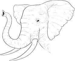 elephant head coloring page eson me