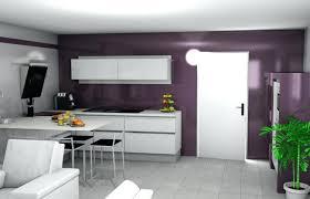 couleur aubergine cuisine deco sur mur gris deco aubergine cuisine cuisine couleur aubergine