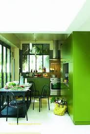 peinture verte cuisine cuisine gris et vert pomme unique superbe faire sa peinture maison 4