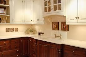 oak kitchen cabinet base white vs wood cabinets kitchens forum gardenweb