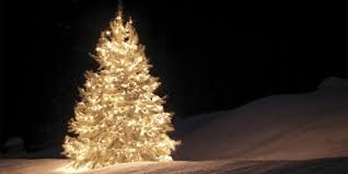 top 10 artificial trees most wanted