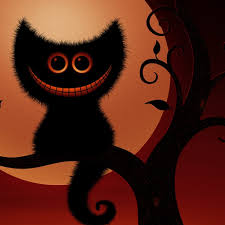 black and orange halloween background funny black cat halloween ipad wallpaper hd halloween wallpaper