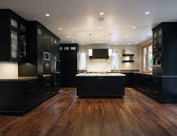 modern kitchen remodel ideas modern kitchen remodels pleasant design ideas 1000 ideas about