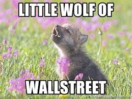 Courage Wolf Meme Generator - images baby insanity wolf meme template