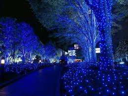 tree lights outdoor wedding sacharoff decoration