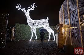 vancouver christmas light maze enchant christmas light maze is not returning to vancouver for 2017