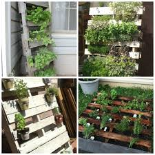 herb gardening for beginners containers home outdoor decoration
