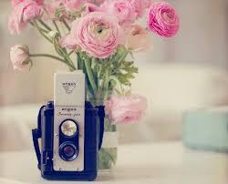 Fake Flowers My Camera My Still Life Photo Vintage Camera Photo Pink Ranunculus