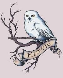 21 best tattoo inspiration hedwig the snowy owl from harry
