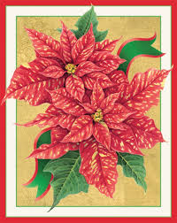 caspari boxed christmas cards christmas lights decoration