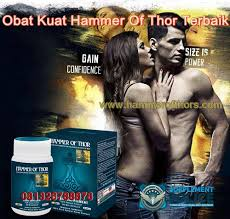 obat kuat pria hammer of thor asli hammer of thor