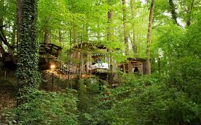 this crazy gorgeous treehouse is most popular listing on