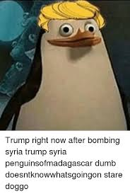 trump right now after bombing syria trump syria