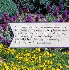 31 best Garden Quotes & Fun images on Pinterest