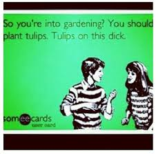 ecard search ecards and