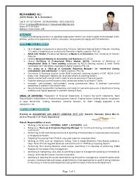 Internal Audit Job Description For Resume by Muhammad Ali Finance Professional Gulf Resume 2