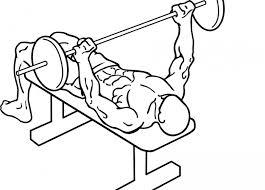 Flat Bench Press Dumbbell Bryst Dit Træningsprogram