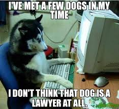 Dog Lawyer Meme - i ve met a few dogs in my time i don t think that dog is a lawyer at