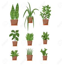 609 indoor plants silhouette cliparts stock vector and royalty