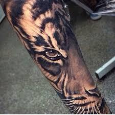 8 best tiger images on ideas tiger