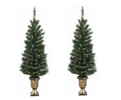 Outdoor Christmas Trees by Pack Of 2 Pre Lit Potted Porch Pine Artifical Christmas Topiary