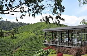 homestay bb guesthouse holiday apartment in malaysia mycribbooking