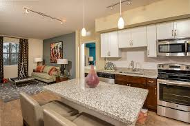 Home Design Tampa Fl Apartment Downtown Tampa Luxury Apartments Home Design Very Nice