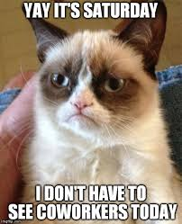 It S Saturday Meme - grumpy cat meme imgflip
