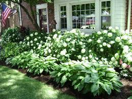 shade garden ideas home interiror and exteriro design home
