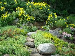 Rock Gardens Images by 1632x1224px 979418 Rock Garden 422 51 Kb 04 09 2015 By Mufasa