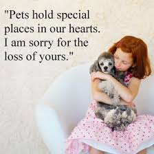 Message For Comforting A Friend Sympathy Messages For Pet Loss Pet Loss Sayings Wishes Messages