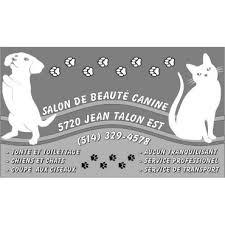 toilettage de l affenpinscher salon de beauté canine in saint leonard quebec 514 329 4578