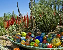 Scottsdale Az Botanical Gardens My Favorite Blown Glass Display Botanical Gardens