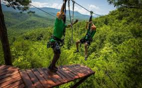 Treetop Canopy Tours by Climb Works Canopy Ultimate Treetop Zipline Adventure In