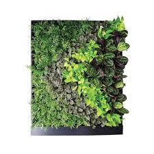 Interior Plant Wall Gsky Plant Systems All Products