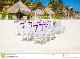 white wedding chairs white wedding chairs decorated with purple bows on stock image