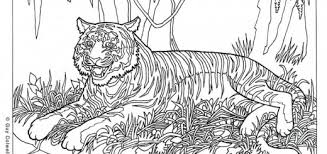 coloring hard coloring pages animal incredible photo ideas