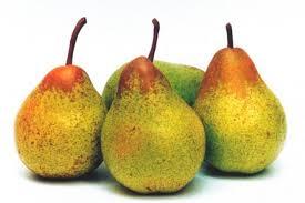 livraison de fruits au bureau panier de fruit archives boîte à fruits livraison de fruits au