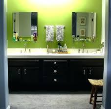 Painted Bathroom Cabinet Ideas Painting Bathroom Cabinet Color Idea Cabinets Ideas Best Paint