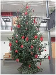 Ksp Bad Saulgau Ein Besonders Schöner Weihnachtsbaum Kaufmännische Und